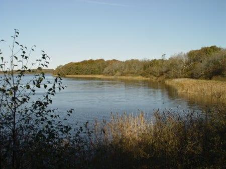 Vandplanerne og kvælstoffet